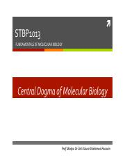 Central Dogma of MB.pdf