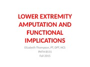 Lower Extremity Amputation and Functional Prognosis