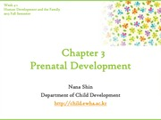 Chapter3. Prenatal Development(cyber)