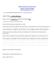 Citizen Service Project Documentation Form