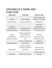 ORGANELLE NAME AND FUNCTION.docx