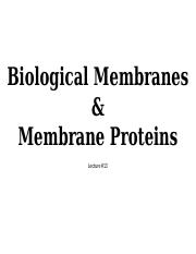 Lecture #13_Biological Membranes  Membrane Proteins_SV.pptx