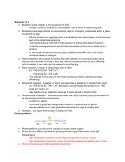 11.3  photosynthesis review.pdf
