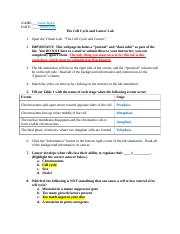 Cell Cycle and Cancer Lab Worksheet.docx