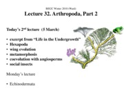 Ward_Lect32A_Arthropoda 2_ppt