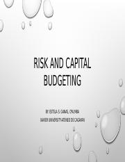 Finman 114B Risk and Capital Budgeting.pptx