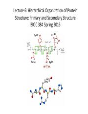 Lecture 6 - Primary & Secondary Structure.pdf