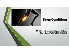 Intro to SM lecture 7 - knee.pdf