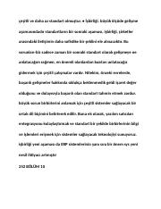 turkish_001713.docx