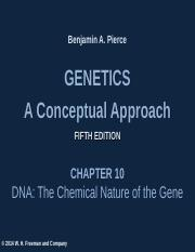 Chapter 10 - Chemical Nature of DNA.ppt