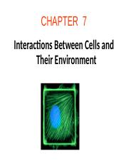 Ch07 Interactions between cells and their environment