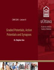 Lecture III - Graded Potentials, Action Potentials and Synapses