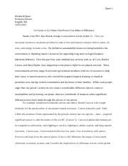 ENG300 Sustainability essay