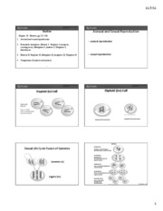 handout lecture Meiosis Chapter 10
