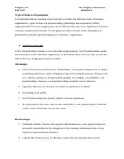 COMPANY WORKSHEET 1.docx