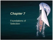 Chapter 7 Foundations of Employee Selection