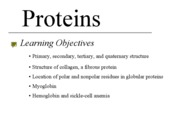 4 - Proteins