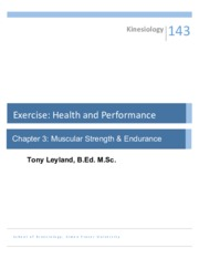 Muscular Strength and Endurance Lecture.pdf