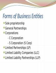 VSB 2007  3 - Business Entities.pptx
