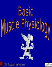 Lecture 4- Muscle Physiology short(1).ppt