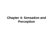 Sensation and Perception(1)