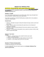 module_four_wellness_plan finished.doc