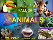 Biol2030 A F12 Exam with Answers
