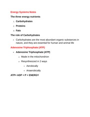 Energy Systems Notes
