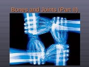 1 bones and joints
