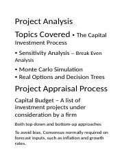 Project Analysis.docx