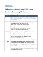 Carbon Footprint and Sustainable Living.docx