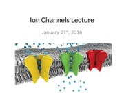 Ion+Channels+Lecture+-+Student+Version.pptx