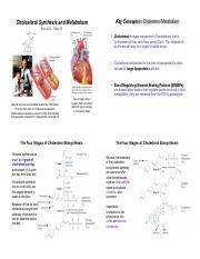 Bioc385i-Topic18-Cholesterol.pdf