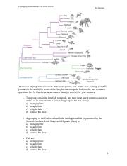 Phylogenetic%20Tree%20WorkSheet_v2_2016