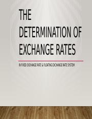 The Determination of Exchange Rates.pptx