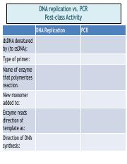 PCR_vs_DNA_replication_key.pdf