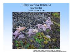 Lecture 21 25 Oct Rocky Intertidal I