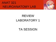 lab1-demoreview