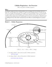 Cellular Respiration-An Overview.pdf