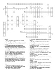 endocrine-crossword - 1 2 3 4 5 6 7 9 8 10 11 12 13 14 15 ...