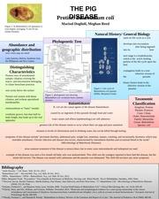 bio 101 general biology pdf