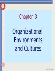 MGMT Ch. 3 - Environment & Culture (1)