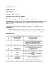 SCIE207_Lab4_PT1_worksheet_REV.doc