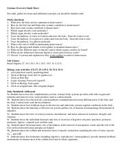 Systems Overview Study Sheet.pdf
