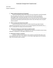 example assignment submission(15).docx