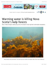 Warming water is killing Nova Scotia's kelp forests | Canadian Geographic.pdf