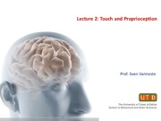Lecture 2. Touch and Proprioception(2)
