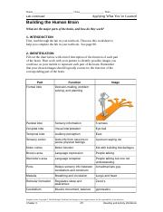 check essay for ielts holiday