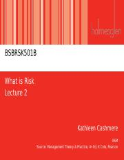 Lecture 2 - What is Risk