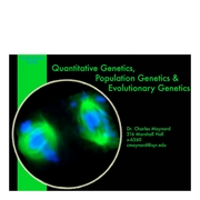 QuantGeneticLecture2